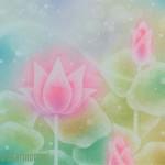 蓮の花(白) ★★★☆☆
