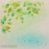 新緑の泉 A