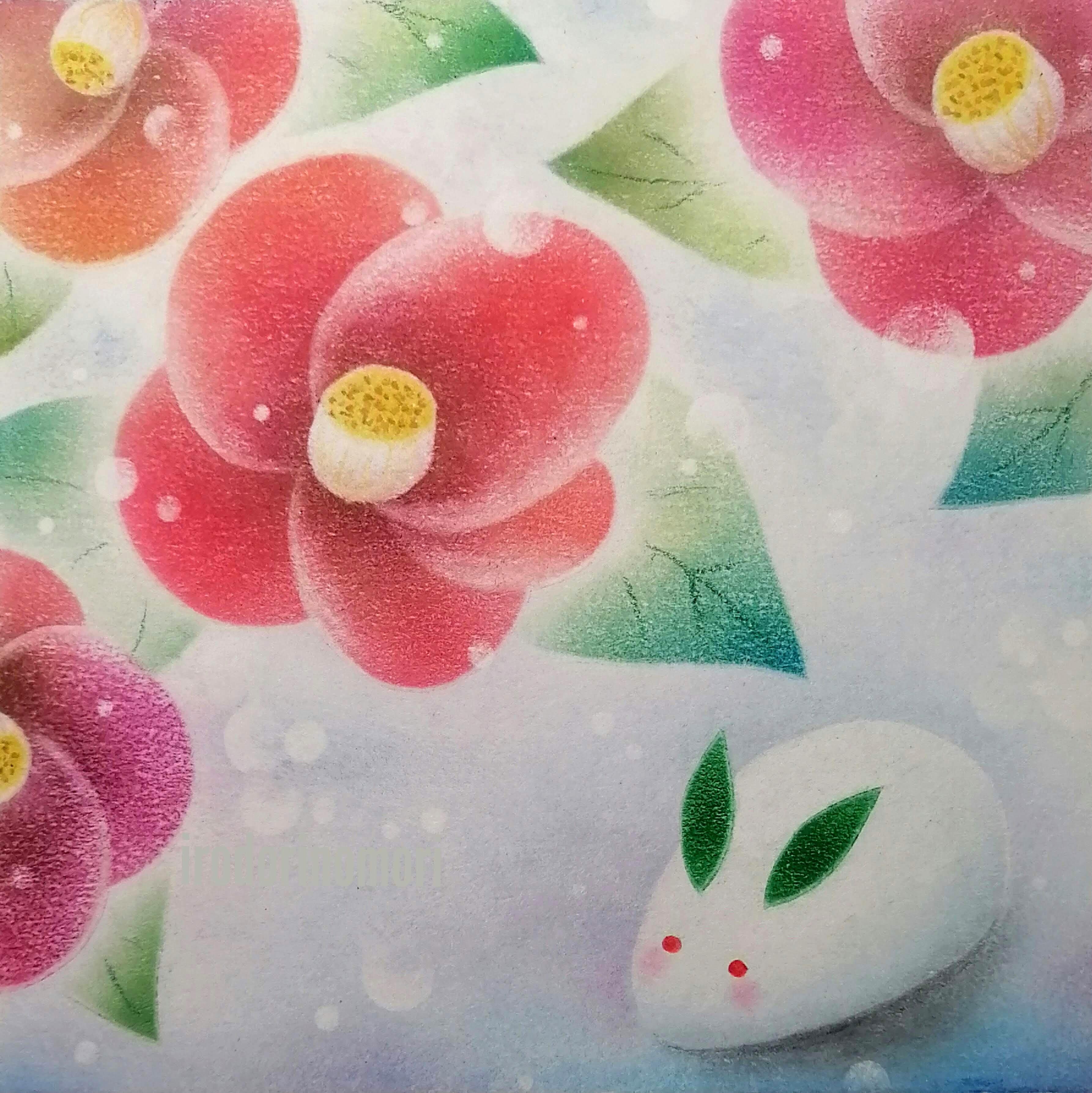 椿と雪うさぎ ★★★★☆